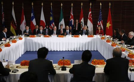 U.S. President Barack Obama (C) meets with the leaders of the Trans-Pacific Partnership (TPP) countries in Beijing November 10, 2014. REUTERS/Kevin Lamarque
