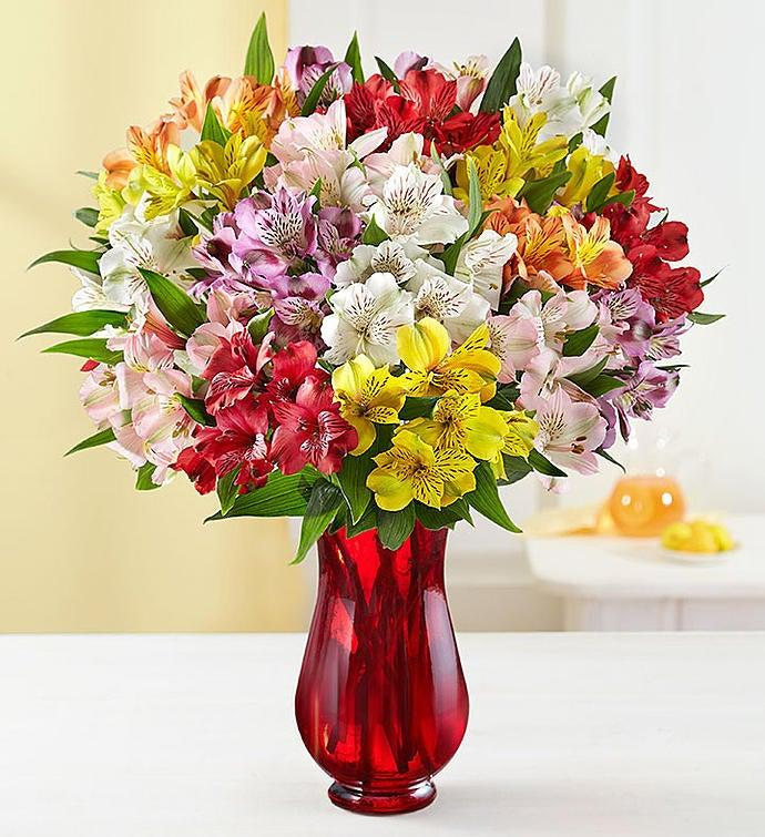 Bouquet of multicolour Peruvian Lilies in a clear red vase.