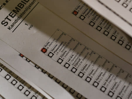 Ballots are counted at polling stations close in The Hague. REUTERS/Michael Kooren