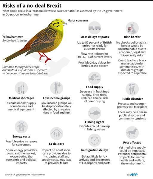 The British government named its worst-case Brexit assessment after the European Yellowhammer bird, which is in decline due to habitat loss