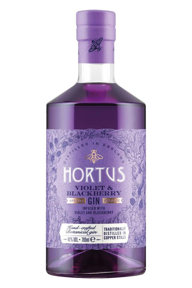 <p>Ahead of the festive season, Lidl has launched a floral Hortus Violet & Blackberry Gin reminiscent of Parma Violets. And who wouldn't want a purple gin on their drinks cabinet this December?</p><p><strong>Available in store for £15.99.</strong></p>