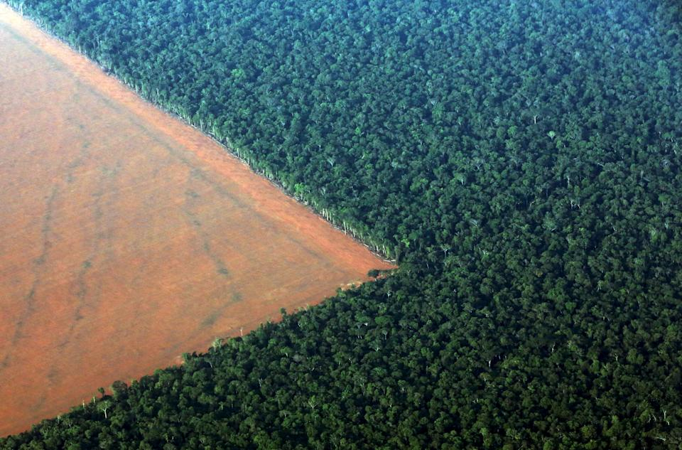 The Amazon rain forest (R), bordered by deforested land prepared for the planting of soybeans, is pictured in this aerial photo taken over Mato Grosso state in western Brazil, October 4, 2015. Brazil will produce a record 97.8 million tonnes of soybeans in 2015/16, a 3.2 percent rise compared to 2014/15, but much of this additional volume will be stored in the country, with little impact on export volumes, estimated on Monday the Brazilian Association of Vegetable Oil Industries (ABIOVE).  Picture taken October 4, 2015.  REUTERS/Paulo Whitaker      TPX IMAGES OF THE DAY