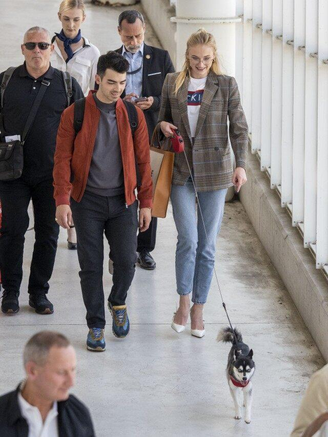Joe Jonas and Sophie Turner with dog in avignon