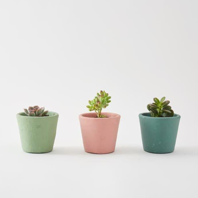 "<h3><a href=""https://www.trouva.com/products/botanique-workshop-set-of-3-small-succulents?utm_source=googleshoppingUK&utm_medium=cpc&utm_campaign=1347323444&utm_content=59839230448&utm_term=&targeting=pla-466552260444&device=c&gclid=EAIaIQobChMIzrei5ZWv4wIVBPlRCh1yQwQnEAQYBSABEgLcSvD_BwE"" rel=""nofollow noopener"" target=""_blank"" data-ylk=""slk:Trouva Set of 3 Small Succulents"" class=""link rapid-noclick-resp"">Trouva Set of 3 Small Succulents</a></h3><p>Unable to maintain a garden at home? Bring a miniature version to your desk. With three different succulents.</p><p><strong>Size:</strong> 7.5 cm x 8 cm</p><br><br><strong>Trouva</strong> Set Of 3 Small Succulents, $9, available at <a href=""https://www.trouva.com/products/botanique-workshop-set-of-3-small-succulents?utm_source=googleshoppingUK&utm_medium=cpc&utm_campaign=1347323444&utm_content=59839230448&utm_term=&targeting=pla-466552260444&device=c&gclid=EAIaIQobChMIzrei5ZWv4wIVBPlRCh1yQwQnEAQYBSABEgLcSvD_BwE"" rel=""nofollow noopener"" target=""_blank"" data-ylk=""slk:Trouva"" class=""link rapid-noclick-resp"">Trouva</a>"