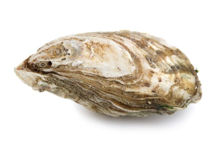 GETTY IMAGES - Oyster