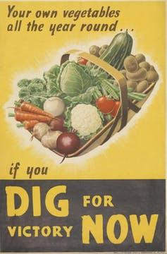 Poster with the phrase Your own vegetables all the year round... if you dig for victory now