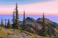 """<p><strong>The Drive: </strong>The <a href=""""https://www.tripadvisor.com/Attraction_Review-g143047-d145611-Reviews-Olympic_Peninsula_Loop_Drive-Olympic_National_Park_Washington.html"""" rel=""""nofollow noopener"""" target=""""_blank"""" data-ylk=""""slk:Olympic Peninsula Loop"""" class=""""link rapid-noclick-resp"""">Olympic Peninsula Loop</a></p><p><strong>The Scene: </strong>Start your drive along Highway 101 in <a href=""""https://www.tripadvisor.com/Tourism-g60878-Seattle_Washington-Vacations.html"""" rel=""""nofollow noopener"""" target=""""_blank"""" data-ylk=""""slk:Seattle"""" class=""""link rapid-noclick-resp"""">Seattle</a> to head into this scenic 330-mile loop. You'll come across amazing forest views as well as the rugged rocks near the Pacific Ocean, all set among one million acres of national land. </p><p><strong>The Pit-Stop: </strong>Stretch your legs at <a href=""""https://www.tripadvisor.com/LocationPhotoDirectLink-g58737-d104769-i110056930-Dungeness_National_Wildlife_Refuge-Sequim_Washington.html"""" rel=""""nofollow noopener"""" target=""""_blank"""" data-ylk=""""slk:the Dungeness Spit"""" class=""""link rapid-noclick-resp"""">the Dungeness Spit</a>, one of the world's longest natural sand spits. </p>"""