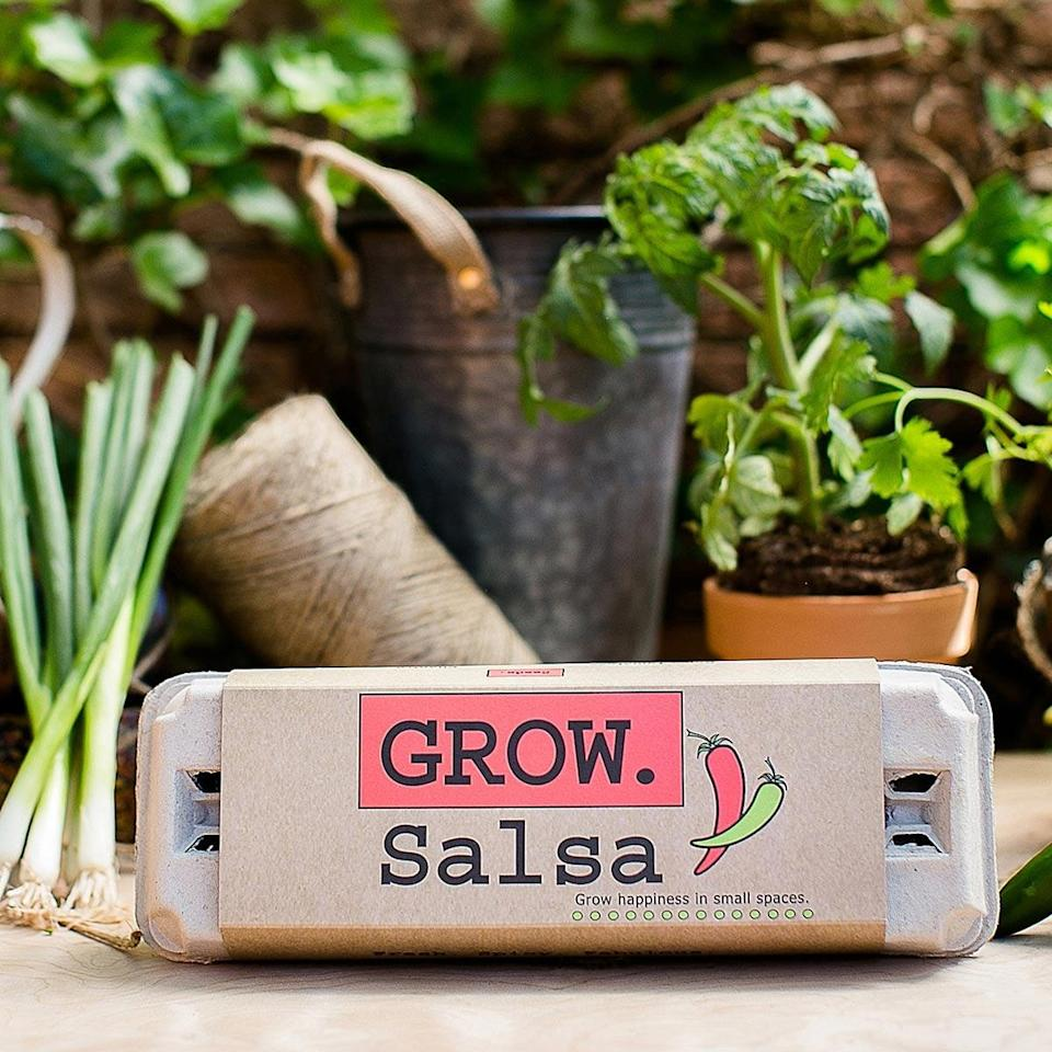 <p>The <span>Salsa Grow Kit</span> ($12) takes homemade salsa to a whole new level. </p>
