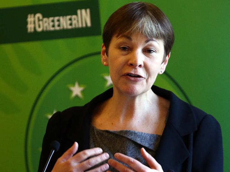 'We the people should continue to have our say', according to Green Party leader Caroline Lucas: Getty