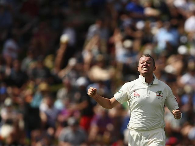 Australia could do far worse than recalling Peter Siddle - the magnificent corned beef sandwich of a man