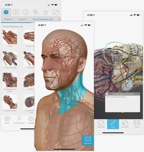 Human Anatomy Atlas 2018 puts a colorful, non-smelly digital cadaver on your phone.