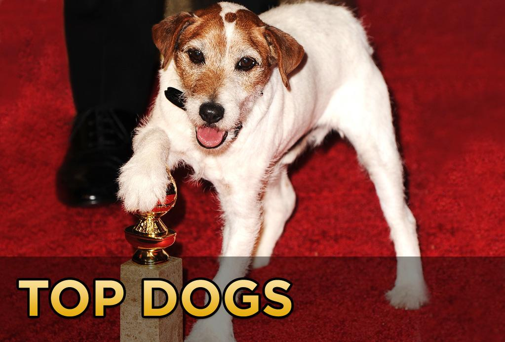 """<p class=""""MsoNormal"""">It's been a difficult week for Uggie the Dog. First, he gets snubbed by the Academy after being overlooked for his scene-stealing performance in Best Picture frontrunner, """"The Artist"""". And now, having been forced to face his movie mortality,<span>Uggie announced his <a href=""""http://movies.yahoo.com/news/uggie-headed-doggie-retirement-150142014.html"""">retirement</a> from film work altogether</span>.</p>  <p class=""""MsoNormal"""">Hopes are high that Uggie will get to close out his Hollywood career by being invited to present at the Oscars next month. Which is all well and good, but we're still not over the fact that Uggie won't be presented with an Oscar of his own. Uggie's snub got us thinking about other top dogs who put in Oscar worthy performances. So in honor of Uggie, we've compiled a list of the top ten tail-wagging roles of all time.</p>"""