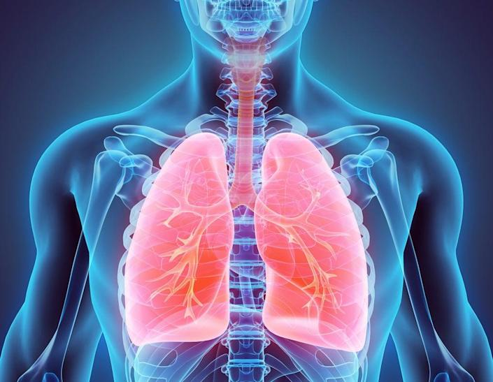 Pollution in the air and water has major effects on the mucosal system (Getty Images/iStockphoto)