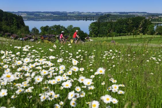 Exploring the Austrian Lake District on two wheels (Salzburgerseenland)