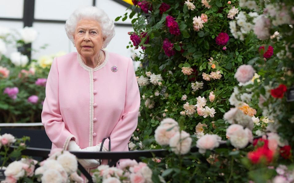 The Queen is not eligible to form a support bubble with another member of her family because she does not live on her own - Richard Pohle/The Times/PA