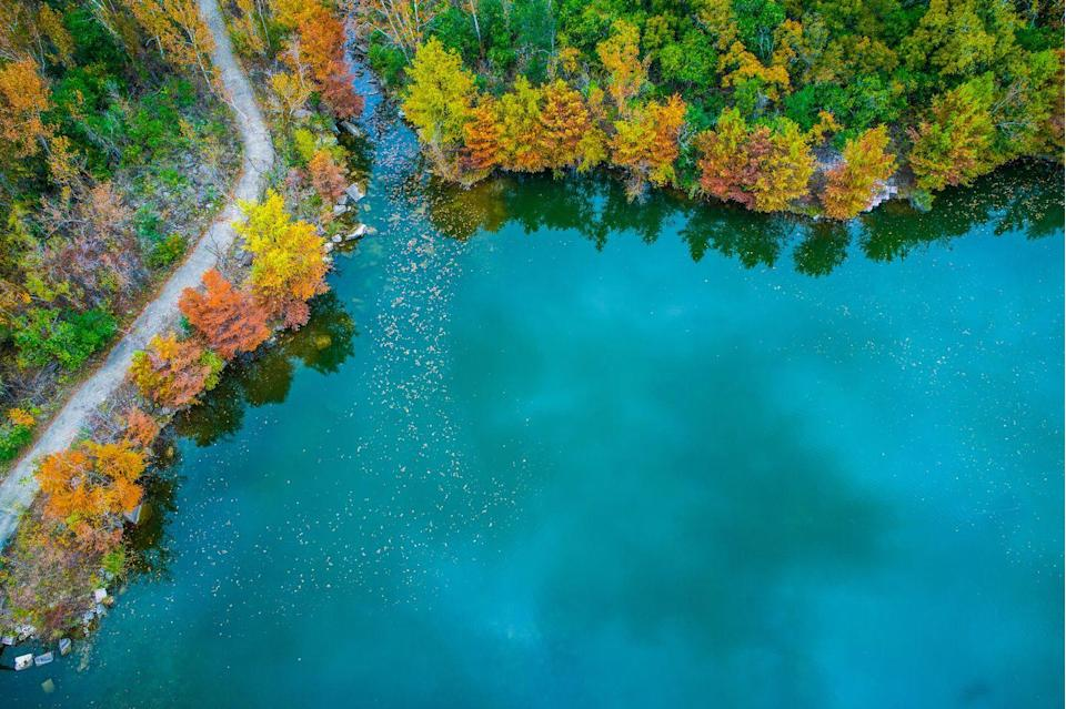 """<p><strong>Where to go:</strong> Red Bud Isle in Austin sits smack-dab in the middle of the Colorado River and the island's trees turn brilliant orange and chartreuse each fall. Bring your pup because dogs can run off-leash at this 13-acre urban haven.</p><p><strong>When to go:</strong> November</p><p><a class=""""link rapid-noclick-resp"""" href=""""https://go.redirectingat.com?id=74968X1596630&url=https%3A%2F%2Fwww.tripadvisor.com%2FHotels-g30196-Austin_Texas-Hotels.html&sref=https%3A%2F%2Fwww.redbookmag.com%2Flife%2Fg34045856%2Ffall-colors%2F"""" rel=""""nofollow noopener"""" target=""""_blank"""" data-ylk=""""slk:FIND A HOTEL"""">FIND A HOTEL</a></p><p><strong>RELATED: <a href=""""https://www.goodhousekeeping.com/life/travel/a23708617/dallas-arboretum-pumpkins/"""" rel=""""nofollow noopener"""" target=""""_blank"""" data-ylk=""""slk:The Dallas Arboretum Uses 100,000 Pumpkins to Build Its Annual Fall Village"""" class=""""link rapid-noclick-resp"""">The Dallas Arboretum Uses 100,000 Pumpkins to Build Its Annual Fall Village</a></strong></p>"""