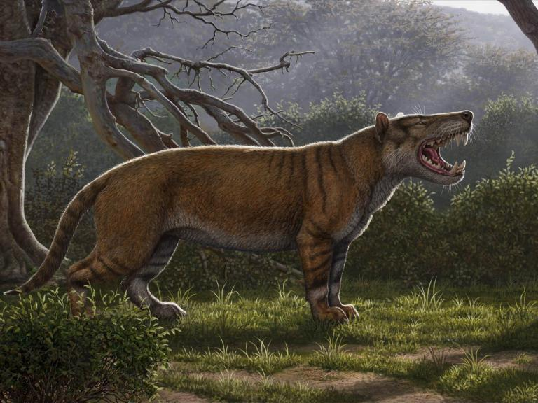 Fossils of massive 'lion' larger than a polar bear discovered in Kenya