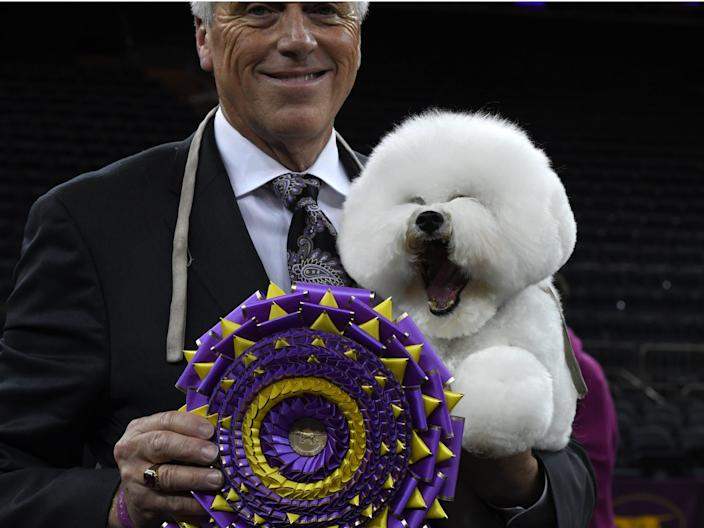 Westminster Kennel Club 142nd Annual Dog Show