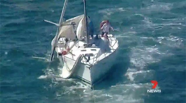 A ferry and a yacht (pictured) have collided in the middle of Sydney Harbour. Source: 7 News