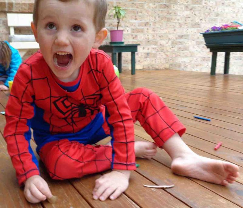 William Tyrrell was wearing a Spider-Man suit when last seen, according to his foster mother. Source: AAP