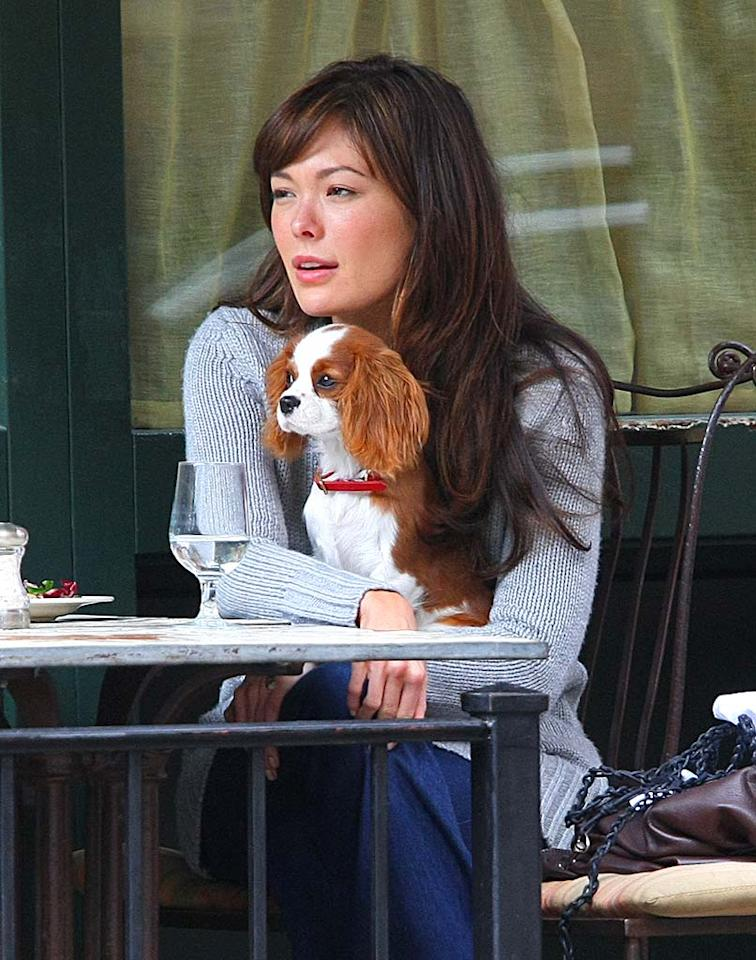 "Speaking of cute couples, what about ""Lipstick Jungle's"" Lindsay Price and her adorable pooch, a Cavalier King Charles Spaniel? Tom Meinelt-Jackson Lee/<a href=""http://www.splashnewsonline.com"" target=""new"">Splash News</a> - October 25, 2008"