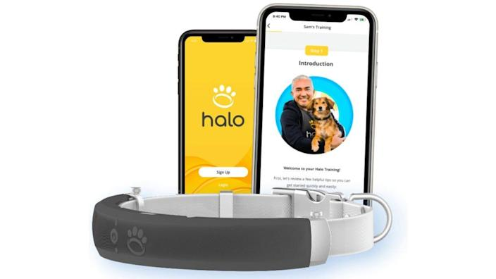 This GPS collar helps you create a virtual fence for your dog, and notifies you if your furry friend has breached it (and helps you locate your pet, too).