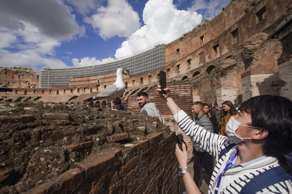 A tourist takes a picture of a seagull in the Colosseum, in Rome, Saturday, March 7, 2020. With the coronavirus emergency deepening in Europe, Italy, a focal point in the contagion, risks falling back into recession as foreign tourists are spooked from visiting its cultural treasures and the global market shrinks for prized artisanal products, from fashion to design. (AP Photo/Andrew Medichini)