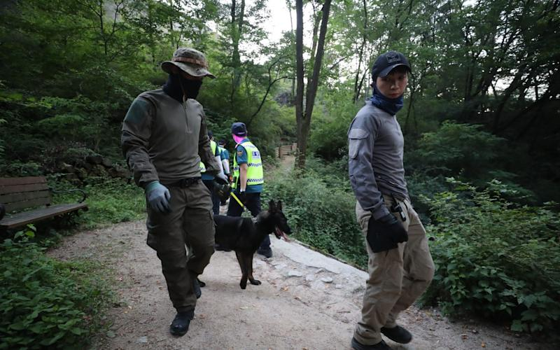 Police have drafted in the help of a sniffer dog as they comb a mountain in Seoul - YONHAP/EPA-EFE/Shutterstock/Shutterstock