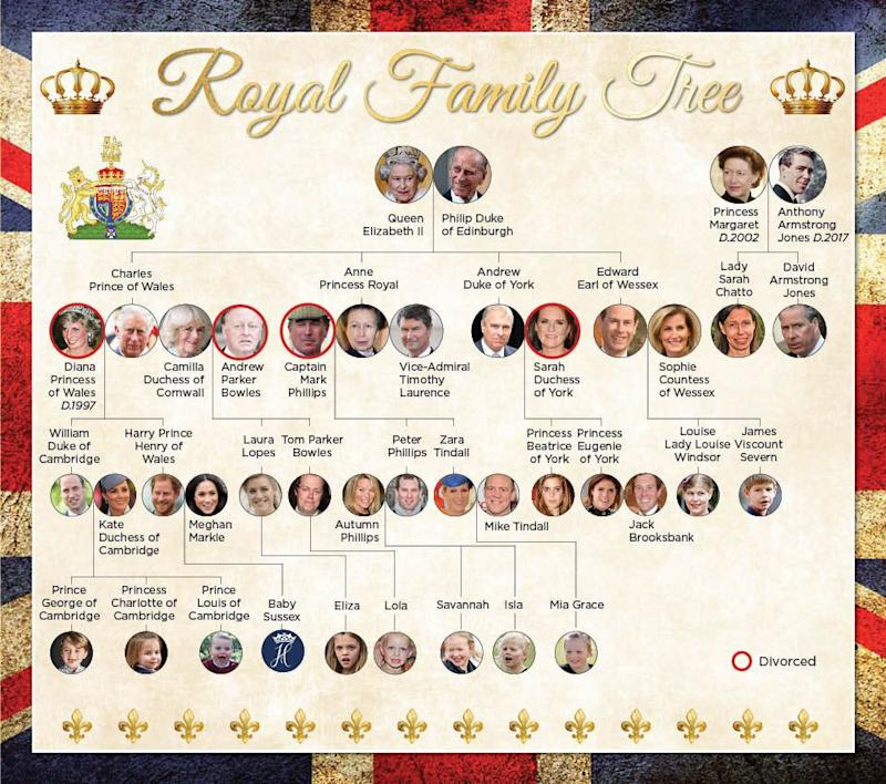 The royal house of windsor family tree including all of the Queen's direct descendants