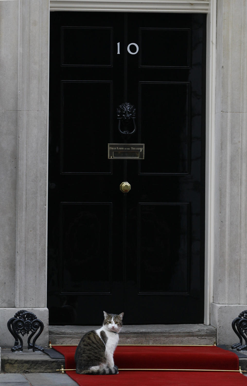 FILE - In this Monday, Jan. 16, 2012 file photo, Larry the cat sits on the red carpet as he awaits Palestinian President Mahmoud Abbas at Downing Street in London. Monday, Feb. 15, 2021 marks the 10th anniversary of rescue cat Larry becoming Chief Mouser to the Cabinet Office in a bid to deal with a rat problem at 10 Downing Street. (AP Photo/Kirsty Wigglesworth, file)
