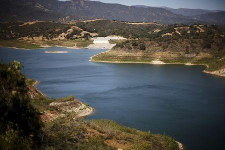 Water level marks are seen around the banks of Lake Casitas, which is at around 50% of its capacity, in Ojai, California April 16, 2015.  REUTERS/Lucy Nicholson