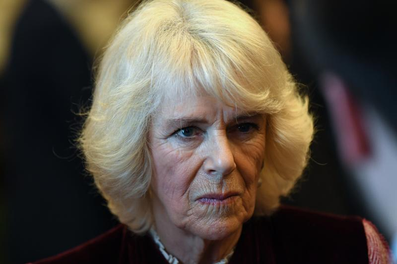 LONDON, ENGLAND - FEBRUARY 13: Camilla, Duchess of Cornwall during a tour of the Cabinet Office on February 13, 2020 in London, England. Their Royal Highnesses toured the Cabinet Office building to recognise the work it undertakes on behalf of the government. The Cabinet Office supports the Prime Minister and ensure the effective running of government. It is also the corporate headquarters for government, in partnership with HM Treasury, and takes the lead in certain critical policy areas. (Photo by Daniel Leal Olivas - WPA Pool/Getty Images)