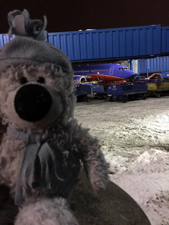This December 2016 photo provided by Steven J. Laudeman shows stuffed bear named Teddy that Eleanor Dewald, 8, lost lost flying from Dallas to Detroit Metropolitan Airport. Steven Laudeman, a Southwest Airlines ramp agent, learned through social of the lost bear, retraced Eleanor's steps before his shift began Thursday, Dec. 22, and found the bear. He then took Teddy on an adventure — photographed for posterity — into a plane's cockpit and service vehicle. (Steven J. Laudeman via AP)