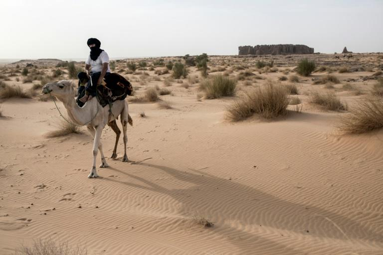 French archaeologist Thierry Tillet has spent nearly 50 years exploring the Sahara (AFP Photo/JOHN WESSELS)