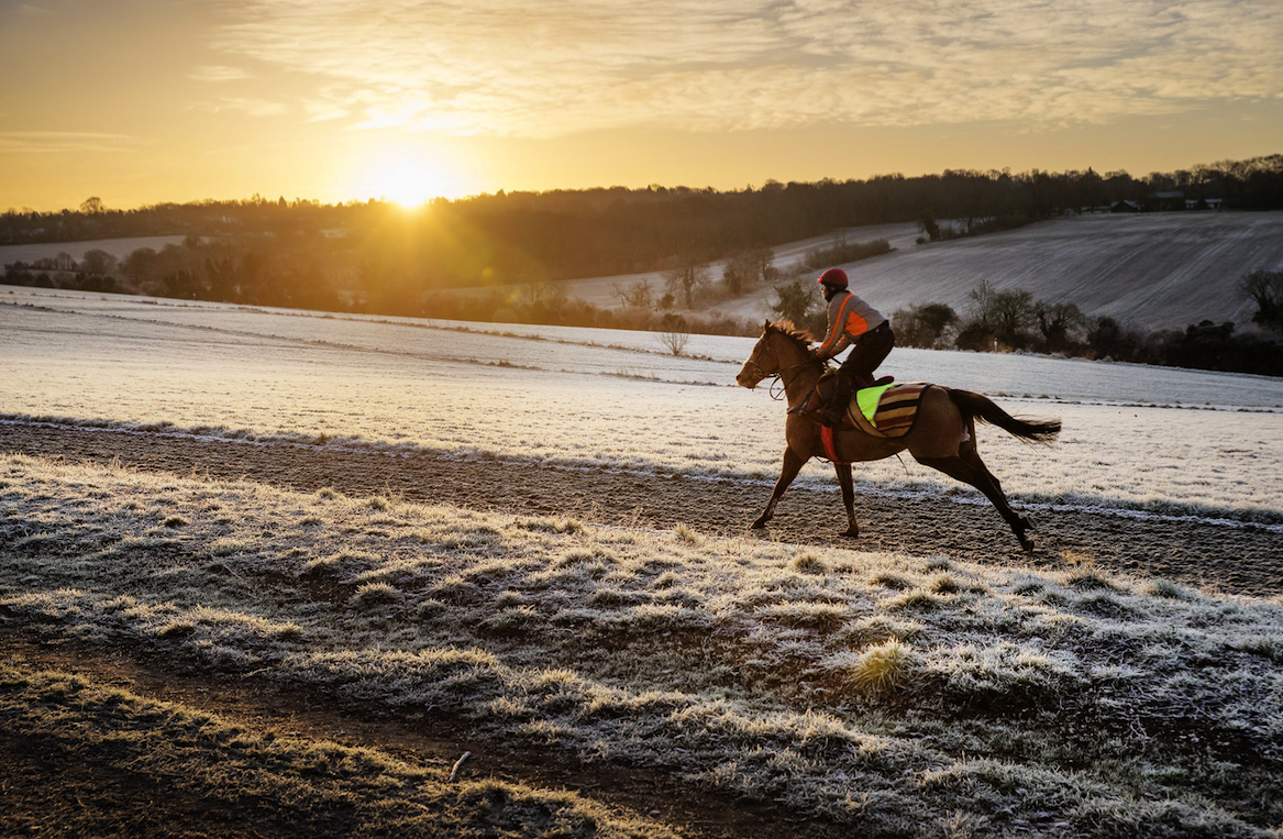 <p>A horse rider gallops across the frosty ground in Epsom, Surrey (Picture: REX Features) </p>