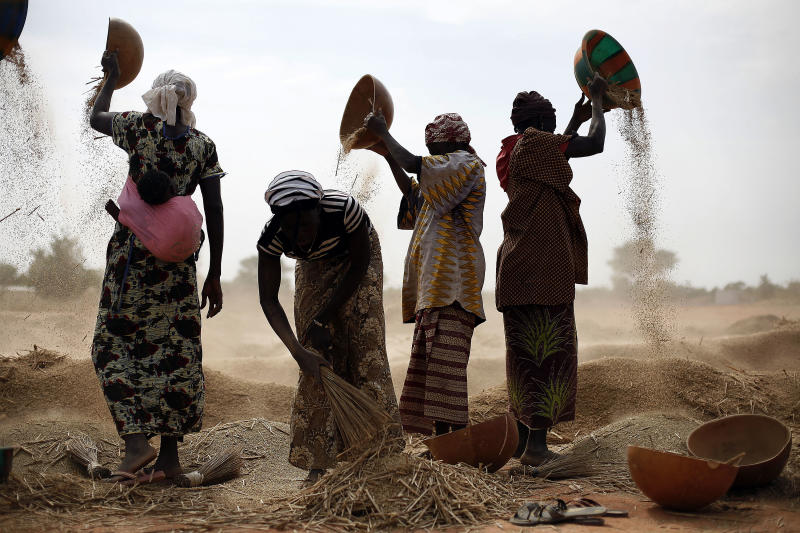Malian women sift wheat in a field near Segou, central Mali, some 240kms (140 miles) from Bamako Tuesday, Jan. 22, 2013. French troops in armored personnel carriers rolled through the streets of Diabaly on Monday, winning praise from residents of this besieged town after Malian forces retook control of it with French help a week after radical Islamists invaded. The Islamists also have deserted the town of Douentza, which they had held since September, according to a local official who said French and Malian forces arrived there on Monday as well. (AP Photo/Jerome Delay)