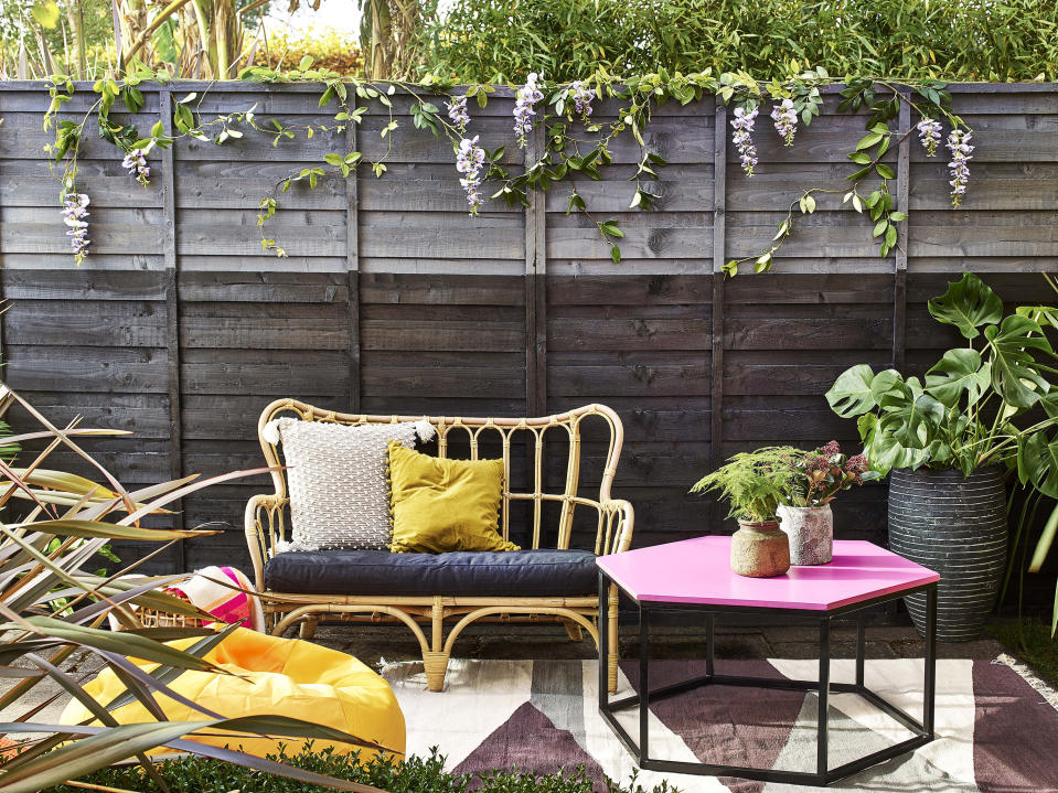 winter garden jobs: painted fence Cuprinol