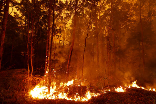 Bushfires burn between the townships of Bemm River and Cann River in eastern Gippsland on Jan. 02, 2020, Australia. (Photo by Darrian Traynor/Getty Images)