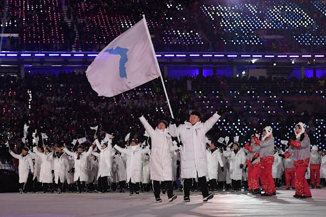 Athletes from the two Koreas marched together at the Winter Olympics this year (AFP Photo/Mark RALSTON)