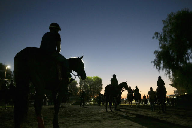 FILE - In this Oct. 29, 2014, file photo, riders and horses walk toward the track for a morning workout ahead of the Breeders' Cup races at Santa Anita Park in Arcadia, Calif. A report released Tuesday, March 10, 2020, by the California Horse Racing Board on a spate of horse deaths at Santa Anita found that no illegal medications were used on the animals and 39% percent of the 23 fatalities occurred on surfaces affected by wet weather. The long-awaited report focused on 23 deaths as a result of racing or training between Dec. 30, 2018, and March 31, 2019. The fatalities roiled the industry and led track owner The Stronach Group to institute several reforms involving safety and medication. (AP Photo/Jae C. Hong, File)