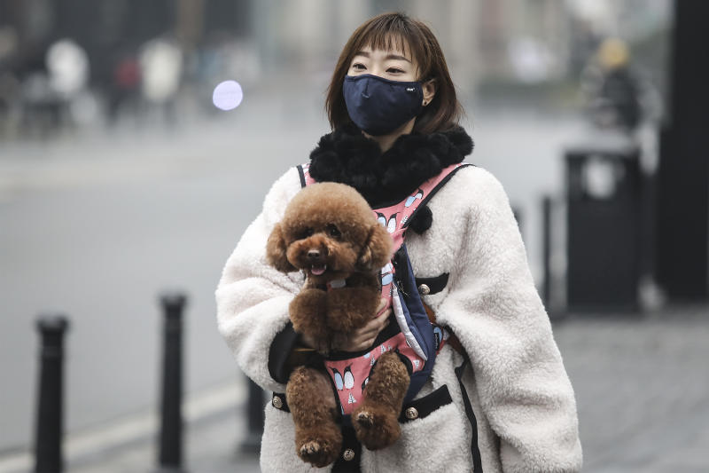 "WUHAN, CHINA - JANUARY 22: (CHINA OUT) A woman wears a mask while carrying a dog in the street on January 22, 2020 in Wuhan, Hubei province, China. A new infectious coronavirus known as ""2019-nCoV"" was discovered in Wuhan as the number of cases rose to over 400 in mainland China. Health officials stepped up efforts to contain the spread of the pneumonia-like disease which medicals experts confirmed can be passed from human to human. The death toll has reached 17 people as the Wuhan government issued regulations today that residents must wear masks in public places. Cases have been reported in other countries including the United States, Thailand, Japan, Taiwan, and South Korea. (Photo by Getty Images)"