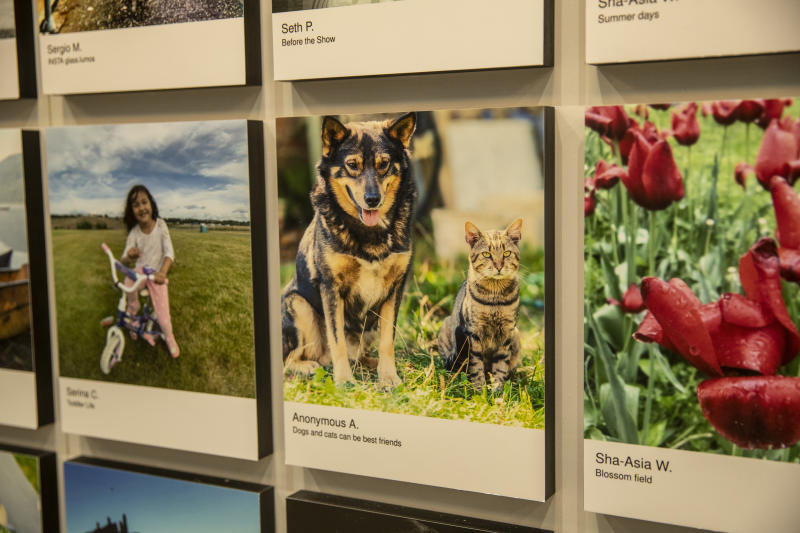 Many selections submitted and making the collection were of family pets. (Photo: Gordon Donovan/Yahoo News)