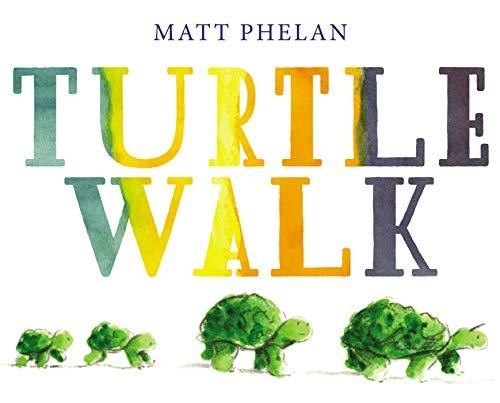 """Turtle Walk,"" by Matt Phelan (Amazon / Amazon)"