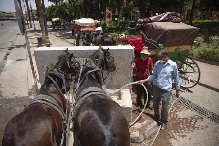 Horse-carriage owners feed their horses at a fountain as they wait for customers on a hot summer day in Marrakech, Morocco, Wednesday, July 22, 2020. (AP Photo/Mosa'ab Elshamy)