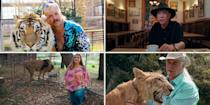 """<p>Hey, all you cool cats and kittens! <em>Tiger King </em>turned our pandemic-stricken worlds upside-down this year with an inside look at the world of big-cat breeding. </p><p><a href=""""https://www.bestproducts.com/lifestyle/g33474762/joe-exotic-costume-ideas/"""" rel=""""nofollow noopener"""" target=""""_blank"""" data-ylk=""""slk:Joe Exotic"""" class=""""link rapid-noclick-resp"""">Joe Exotic</a> and Carole Baskin may be obvious options for Halloween, but you <em>will</em> need some tigers, too. Grab some friends and get in on one of this year's biggest dress-up trends.</p>"""