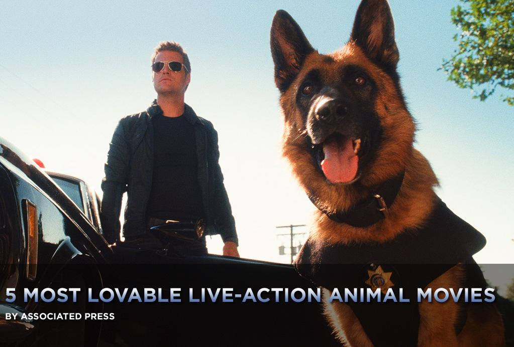 """The cats and dogs of <a href=""""http://movies.yahoo.com/movie/1810046973/info"""">Cats & Dogs: The Revenge of Kitty Galore</a> have all kinds of super-spy gadgetry and training at their disposal: jet-packs, tricked-out collars, the works. But they come from a long and lovable tradition of live-action animal movies -- ones that were simpler and sweeter, which seem to be in short supply these days, given the eye-popping sophistication of computer animation.   <a href=""""http://movies.yahoo.com/news/movies.ap.org/5-most-lovable-liveaction-animal-movies-ap"""">Here's a look at five that deserve two paws up:</a>"""