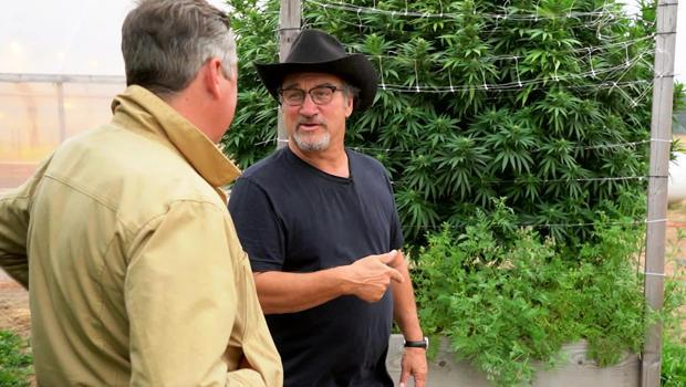 Actor and cannabis farmer Jim Belushi with correspondent Luke Burbank. / Credit: CBS News