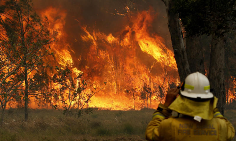 Picture of a firefighter in Old Bar NSW, where bushfire burns out of control.