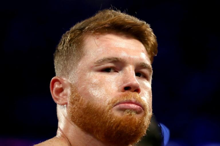Middleweight king Canelo Alvarez will go up two weight classes to fight Sergey Kovalev in Las Vegas on November 2