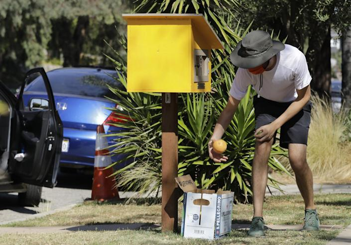 """Marc O'Brien pulls citrus from a box in front of a home in Silver Lake during a Fruit-Share event. <span class=""""copyright"""">(Myung J. Chun / Los Angeles Times)</span>"""
